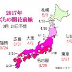 WCN さくらの開花予想2017 第7回
