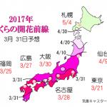 WCN さくらの開花予想2017 第8回