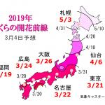 WCN さくらの開花予想2019 第3回