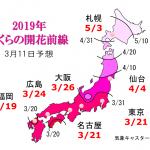 WCN さくらの開花予想2019 第4回