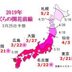 WCN さくらの開花予想2019 第6回