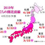 WCN さくらの開花予想2019 第10回