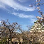 大阪・大阪城内西の丸庭園【桜標本木】